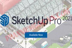 Tải SketchUp Pro 2021 Full Crack - Có hướng dẫn【Google Drive】